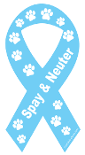 Spay & Neuter Ribbon Magnet - Turquoise