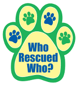 Who Rescued Who Paw Print Magnet - Green/Yellow/Blue