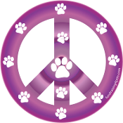 Peace Sign Circle Magnet - Purple