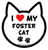 I Love My Foster Cat cat head magnet - NEW!