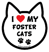 I Love My Foster Cats cat head magnet - NEW!