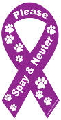 Spay & Neuter Ribbon Magnet - Purple