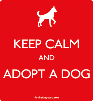 Keep Calm and Adopt a Dog magnet - red * NEW!