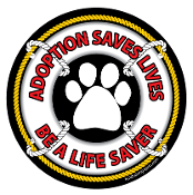 Adoption Saves Lives Be a Life Saver Circle Magnet