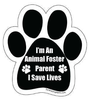 I'm an Animal Foster Parent Paw Print Magnet *bargain bin*