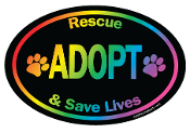 Rescue Adopt and Save Lives Oval Magnet - Rainbow