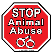 Stop Animal Abuse Stop Sign Magnet
