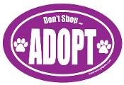 Don't Shop Adopt Oval Magnet- Purple