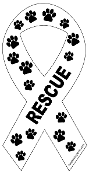 Rescue Ribbon Magnet - White
