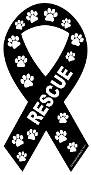 Rescue Ribbon Magnet - Black