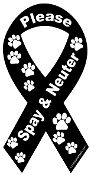 Spay & Neuter Ribbon Magnet - Black