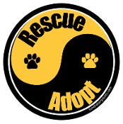 Yin Yang Rescue Adopt Circle Magnet - Black/Gold *bargain bin*