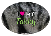 I Love My Tabby oval magnet - NEW!