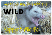 Most of My Friends Are Wild Rectangle Magnet -Opossum- NEW!