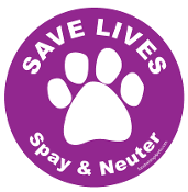 Save Lives Spay & Neuter Circle Magnet - Purple