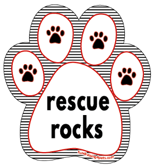 Rescue Rocks paw magnet - stripes *NEW*