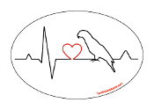Heartbeat oval magnet - Bird *NEW*