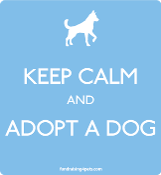 Keep Calm and Adopt a Dog magnet - light blue * NEW!