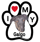 I Love My Galgo Paw Magnet - NEW!