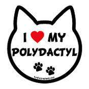 I Love My Polydactyl cat head magnet - NEW!