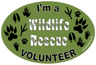 I'm a Wildlife Rescue Volunteer oval magnet - NEW!