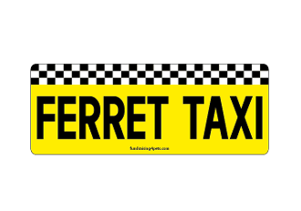 Ferret Taxi rectangle magnet *NEW*