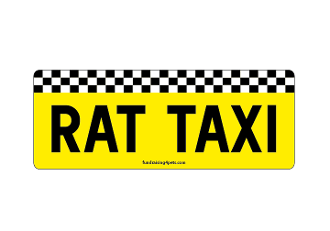 Rat Taxi rectangle magnet *NEW*