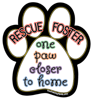 One Paw Closer to Home Paw Print Magnet *NEW, UPDATED VERSION*