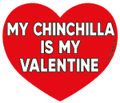 My Chinchilla Is My Valentine heart magnet *NEW*