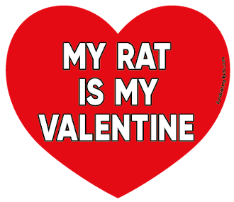 My Rat Is My Valentine heart magnet *NEW*