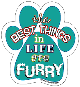 The Best Things in Life are Furry magnet - teal/multicolor *NEW*