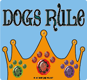 Dogs Rule square/rectangle magnet *NEW*