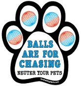Balls Are for Chasing - Neuter Your Pets paw magnet *NEW*