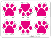 Mini Paw Magnets 6pk - Hot Pink *NEW*