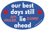 Our Best Days Still sit- shake- Lie down Ahead oval magnet *NEW*